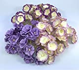 100 pcs. Blossom Flower Purple Tone Mulberry Paper Flower 20-25 mm Scrapbooking Wedding Doll House Supplies Card by' Thai Decorated