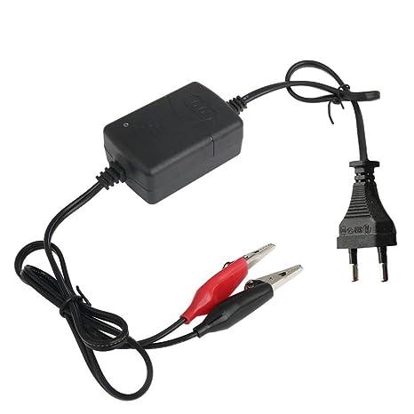 ZOREFINE - Cargador de batería para coche, camión, moto, 12 ...