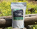 Animal Element Product X Performance Enhancer - 2 Lb. - All Natural, GMO Free Equine Supplement