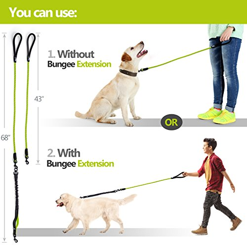 Heavy Duty Rope Leash for Large and Medium Dogs with Anti-Pull Bungee for Shock Absorption - No Slip Reflective Leash for Outside - Suitable for Dog Training and Walking(Green)