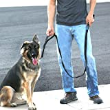 Max and Neo™ Double Handle Traffic Dog Leash Reflective - We Donate a Leash to a Dog Rescue for Every Leash Sold (BLACK)