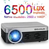 2K Projector, BIGASUO Full HD Projector 6500 Lumens HDMI Projector with 300' Compatible with TV Stick, HDMI, VGA, USB, SD Card, Laptop, Smartphone for Home/Business Use PowerPoint Presentation