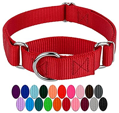 Country Brook Petz - Martingale Heavy Duty Nylon Dog Collar