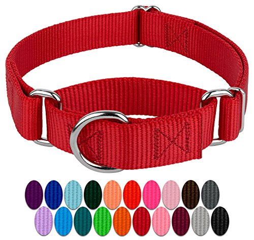 Country Brook Design - Martingale Heavyduty Nylon Dog Collar - Red - Medium ()
