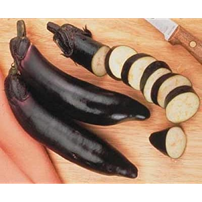 Eggplant Ichiban Vegetable Seeds : Garden & Outdoor