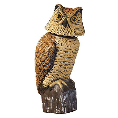 Head Garden Statue (Owl with Movable Head Garden)