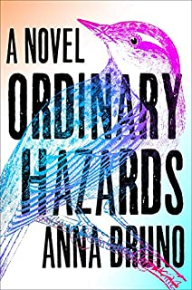 Book Cover: Ordinary Hazards: A Novel
