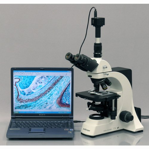 AmScope T700D Professional Trinocular Compound Microscope, 40X-2500X Magnification, PL10x, WH20x, and WH25x Super-Widefield Eyepieces, Quintuple Nosepiece with 5 Infinity Plan Objectives, Brightfield, Kohler Condenser, Double-Layer Mechanical Stage
