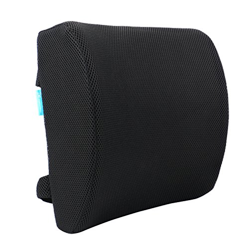 Back Lounge Seat (Minerva Lumbar Pillow Memory Foam Backrest Support Cushion, Improve Posture Lower Back Pain Relief for Office Chair Car Seat with Dual Adjustable Strap)