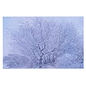 "outlet KESS InHouse AC1053ADM02 Alison Coxon ""Winter Tree"" Lilac Dog Place Mat, 24"" x 15"""