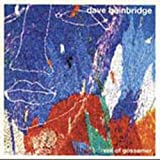 Veil of Gossamer by DAVE BAINBRIDGE (2013-05-03)