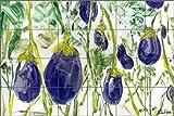 Artwork On Tile Ceramic Mural Backsplash Fresh Eggplant by LuAnn Roberto - Kitchen Shower Wall (25.5'' x 17'' - 4.25'' tiles)