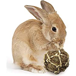SunGrow Rabbit Teeth Coconut Fiber Ball, 2.5 to 3-inches, Floss Ball Improves Dental Health, Stress Relieving, Lightweight, Ideal for Pocket Pet