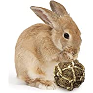 SunGrow Coconut Fiber Ball for Rabbit Improves Dental Health - 100% Natural Chew Toy- Provides Hours of Stimulation - Environment Friendly, Stress Reliever - Ideal for Bunnny, Chinchilla & Kitten