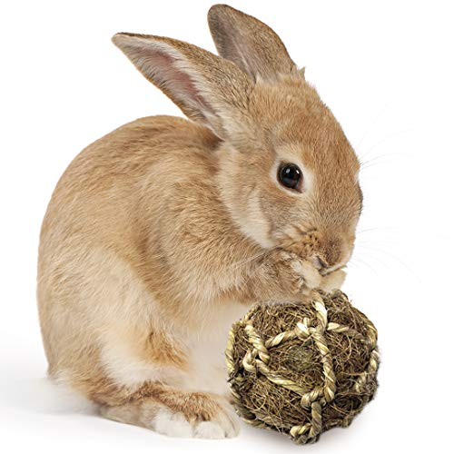 Rabbit Teeth Floss Ball --- Coco Fiber Improves Dental Health - Trims Tooth - Chew Toy Provides Stimulation - Play Catch, Tug of War, Fetch - Boredom Buster Stress Reliever Ball - Ideal for Pocket Pet