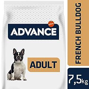Advance Bulldog Francés Pienso Para Perros De Raza Bulldog Francés  – 7.5 Kg