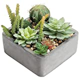 MyGift 6-Inch Faux Succulent Plant Arrangement in Square Cement-Tone Planter