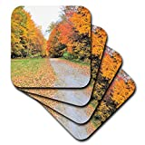 3dRose Dreamscapes by Leslie - Scenery - Country road with a burst of fall colors - set of 4 Ceramic Tile Coasters (cst_292205_3)