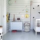 LANGYASHAN Storage Bin,Canvas Fabric