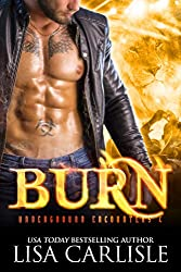 Burn: A shifter and vampire rock star romance (Underground Encounters Book 4)