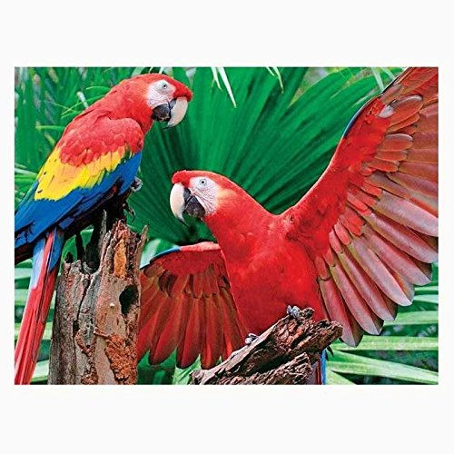 Springbok Puzzles - Scarlet Macaw - 400 Piece Jigsaw Puzzle - Large 26.75 Inches by 20.5 Inches Puzzle - Made in USA - Unique Cut Interlocking Pieces - Big Pieces for Kids & Small Pieces for Adults