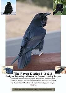 The Raven Diaries 1, 2 & 3 (2 Disk Set)