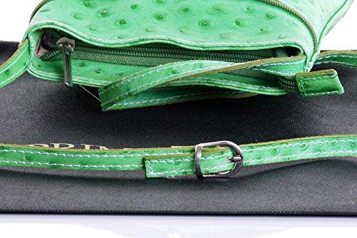 main cuir ou sac fait lisse Vert d'autruche corps protecteur un ou marque sac de Autruche nbsp;Comprend rangement petite italien en finition à Croix Effet main 6v80Pqt6