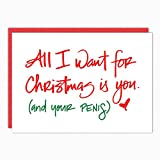 Best Boyfriend Cards - Naughty Christmas Cards. All I Want Is You Review