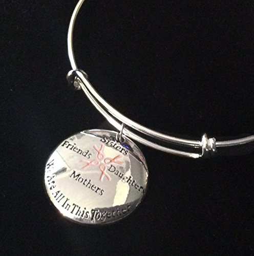 Sisters Friends Mothers Daughters Pink Awareness Ribbon Silver Expandable Charm Bracelet Adjustable Bangle We Are All In This Together