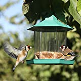 PetsN'all Hanging Gazebo Bird Feeder - Perfect for Garden Decoration and Bird Watching for Bird Lover and Kids