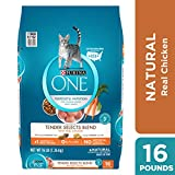 Purina ONE Natural Dry Cat Food, Tender Selects Blend With Real Chicken - 16 lb. Bag Larger Image