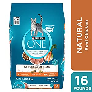 Purina ONE Natural Dry Cat Food; Tender Selects Blend With Real Chicken - 16 lb. Bag 68