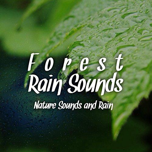 Rain Sounds  Rain On Tent & Amazon.com: Rain Sounds : Rain On Tent: Nature Sounds and Rain ...