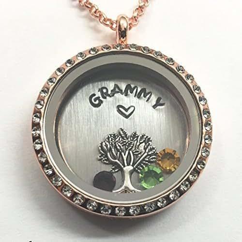 Amazon.com: GRAMMY Necklace - Floating Charm Locket