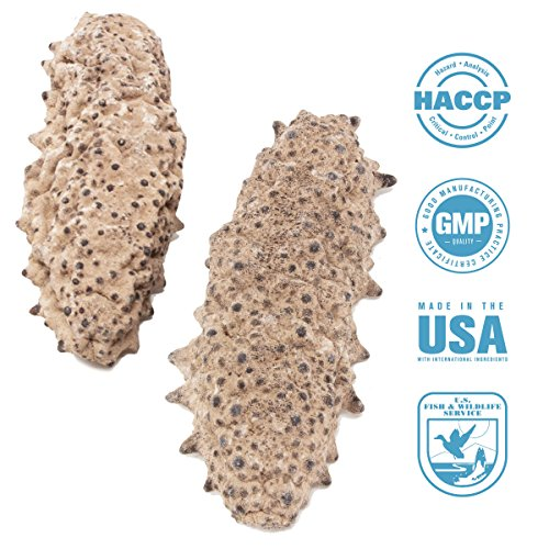 SEABENEFIT Mexico Badionotus Sea Cucumbers - Wild Caught Sea Cucumber Dried All Natural Nutritious Medium by SB Organics