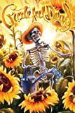Aquarius Grateful Dead Grower Poster, 24-Inch by 36-Inch