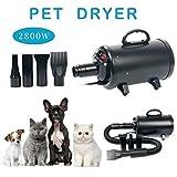 YaeKoo Portable Dog Cat Pet Grooming Dryer 2800w Salon Blow Hair Dryer Quick Draw Hairdryer w/4 Nozzles Pet Hairdryer Machine Set (Black)
