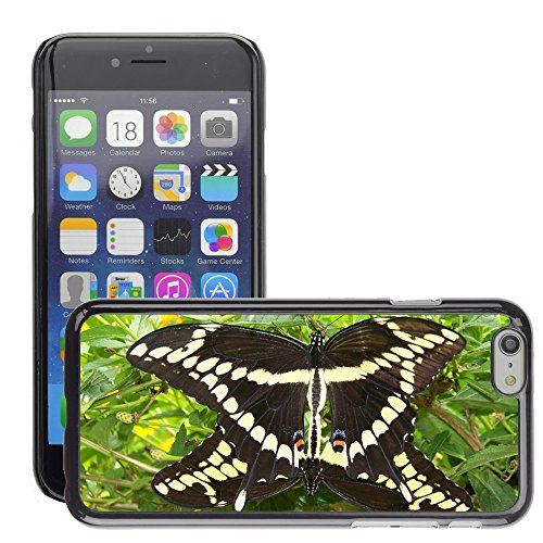 """Just Phone Cases Hard plastica indietro Case Custodie Cover pelle protettiva Per // M00128313 Summer Butterfly Wings de insectes // Apple iPhone 6 PLUS 5.5"""""""
