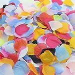 entertainment-moment-1000PcsLot-5Cm-DIY-Artificial-Flowers-Petals-Silk-Rose-Petals-Leaves-Wedding-Decoration-Party-Decor-Festival-Table-DecorF205Cm