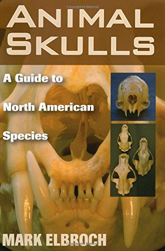 Animal Skulls: A Guide to North American ()