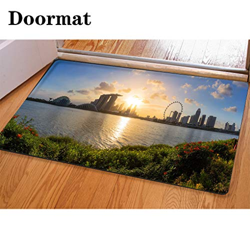 HooMore 3D Printing and Dyeing,Bathroom Carpet, Door mat,Panorama View of Singapore City Flannel Foam Shower mat, Absorbent Kitchen Door Carpet