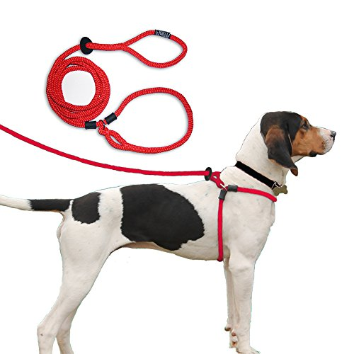 Harness Lead Escape Proof, Reduces Pull Dog Harness, Small/Medium, Red