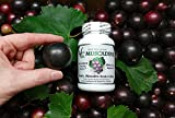 Vine Life Muscadine Grape Seed amp Skin 650mg - 60 Veggie Capsules - Antioxidant Superfood - 1300mg Per Serving Discount