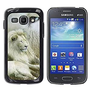 Stuss Case / Funda Carcasa protectora - Lion Collage Nature White Eye King Africa - Samsung Galaxy Ace 3 GT-S7270 GT-S7275 GT-S7272