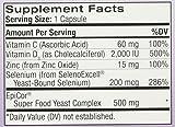 Natrol Immune Boost Capsules, 30 Count