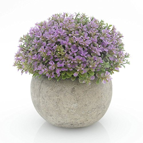 Velener Mini Plastic Artificial Pine Ball Topiary Plant with Pots for Home Decor (Purple Clover) (Pot Artificial Pine)