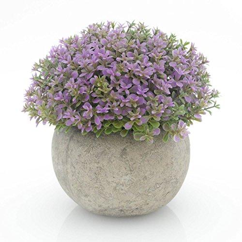 Velener Mini Plastic Artificial Pine Ball Topiary Plant with Pots for Home Decor (Purple Clover) (Artificial Pot Pine)