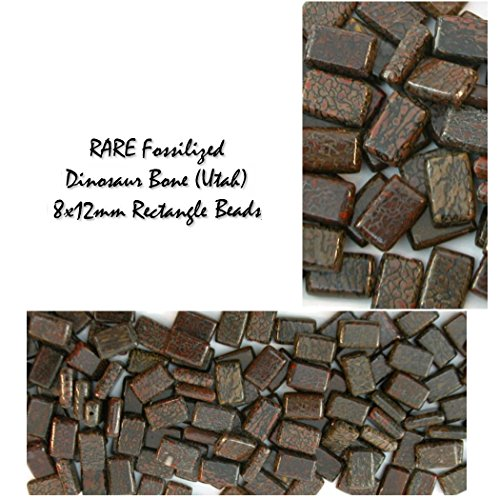 Genuine RARE Fossilized Dinosaur Bone (Utah) 8x12mm Rectangle Gemstone Beads, (pk of 4 stones - 2 earring (8x12mm Bead)