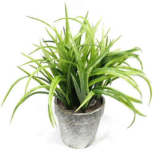 Green Grass 10 Inch Artificial Topiary Plant in Faux Stone Pot Home Decor and Office Tabletop
