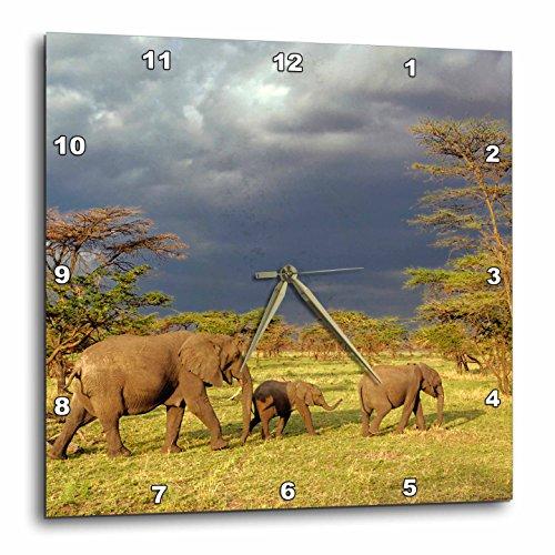 3dRose dpp_71689_1 African Elephant Herd, Serengeti National Park, Tanzania-Af45 Aje0223-Adam Jones-Wall Clock, 10 by 10-Inch